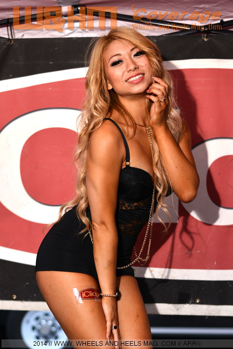 Rose Tse import model at the iClique lounge in 2014 HIN LA car show