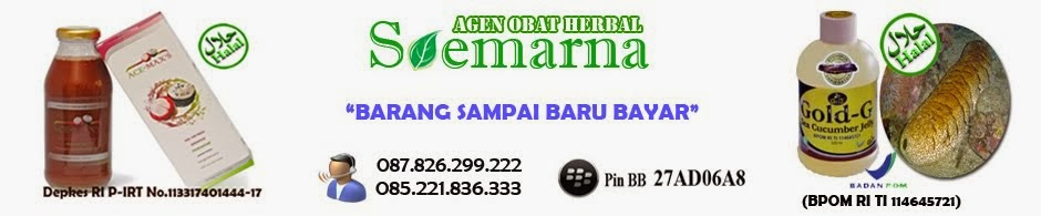 Pengobatan Herbal Alami