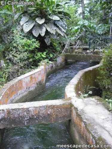 Canal artificial en el Centro Turístico Naciente del Río Tioyacu (Rioja, Perú) 2
