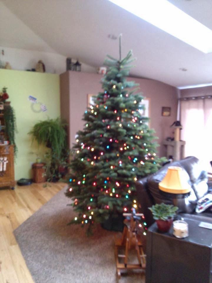 paulina goes usa froehliche weihnachten teil 1. Black Bedroom Furniture Sets. Home Design Ideas