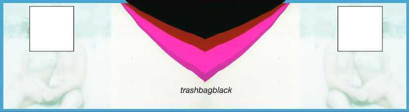Trash Bag Black