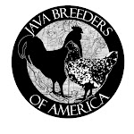 All material © 2011 Java Breeders of America. All rights reserved.