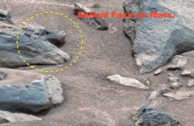 Ufo sightings daily ancient alien face discovered on mars