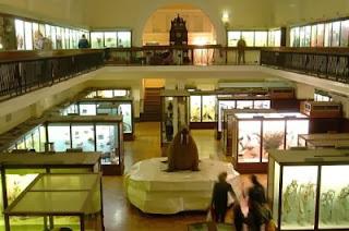 museo-horniman