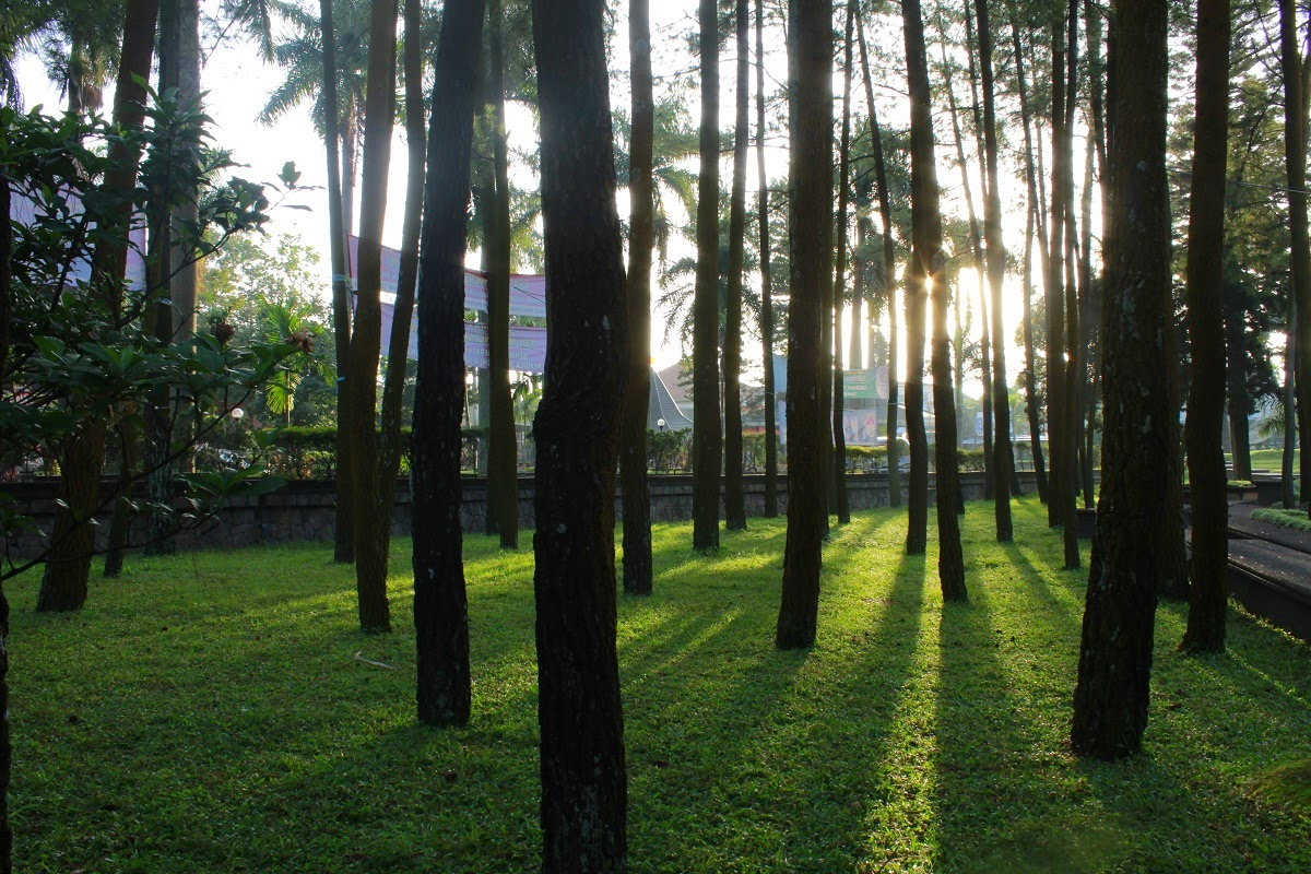Tempat spot Hunting Foto Blimbing Malang