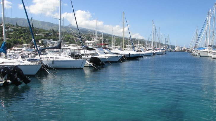 Voiliers à la Marina Taina