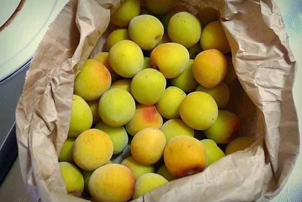 黄色く熟した梅