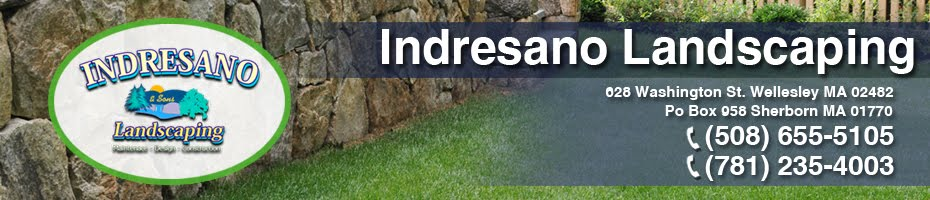 Indresano Landscaping | Indresano Landscaping (781) 235-4003