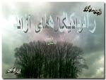 برگردان فارسی داستان رادیکال های آزاد اثر الیس مونرو