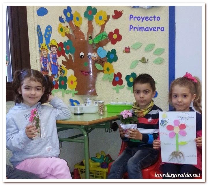 Proyecto Primavera