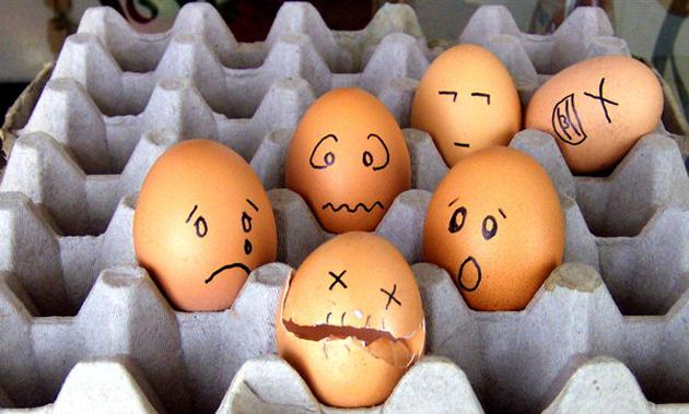 Awesome Egg Photography