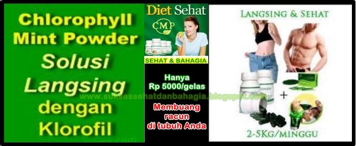 slim, detoks, langsing sehat, diet alami, klorofil, daun murbei