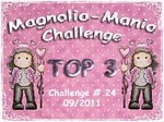 TOP 3 Magnolia Mania Challenge with this Christmas card and partylight.