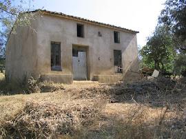 Vendo campo, olivar 3 hectáreas en Aracena (Huelva) si te interesa contacta