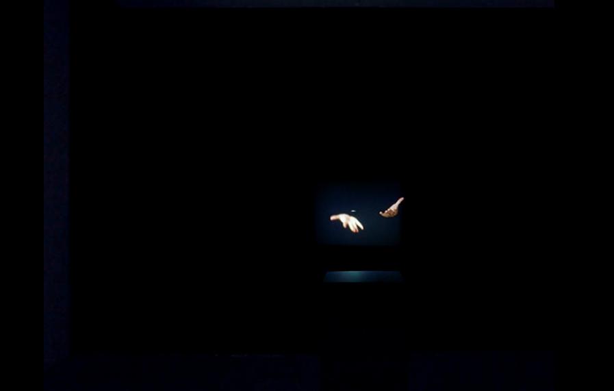 (Des)apariencia ((Dis)apperance), 2013