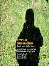 Electiva 3