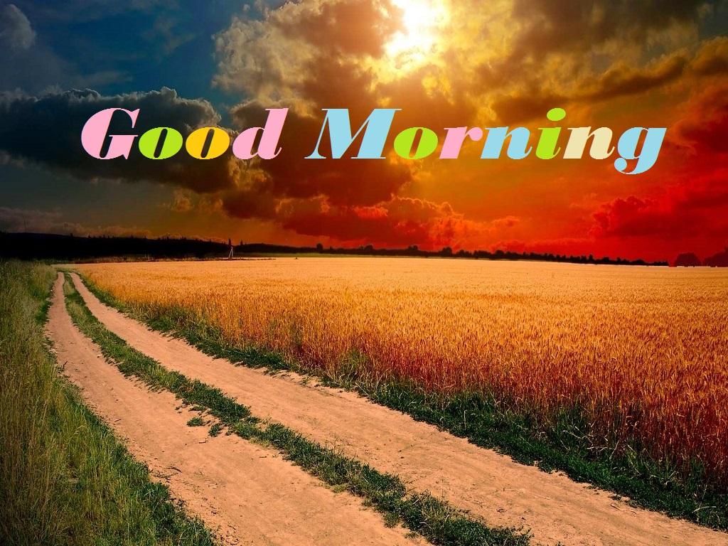 Good Morning Nature Photos : Best good morning whatsapp facebook images festival chaska