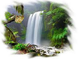 La Paz Perfecta  Mis Parbolas y Reflexiones Favoritas