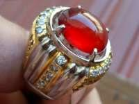 Merjan Batu Merah yang Istimewa