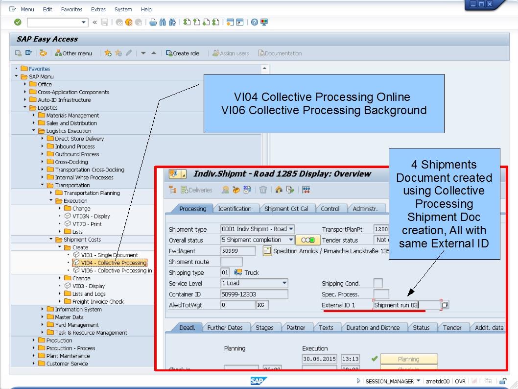 青蛙SAP学习和考试 Learning Examination LE Transporation - Freight invoice management