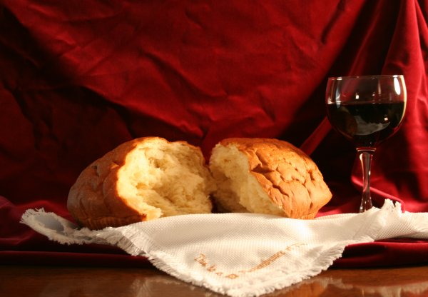Yeast cells are important in making bread and wine.