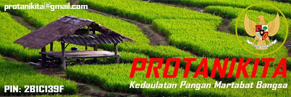 Protanikita