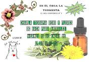 """Charla """"Terapia reiki y flores de bach para animales"""""""