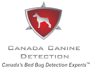 Toronto Bed Bug Inspection Dog