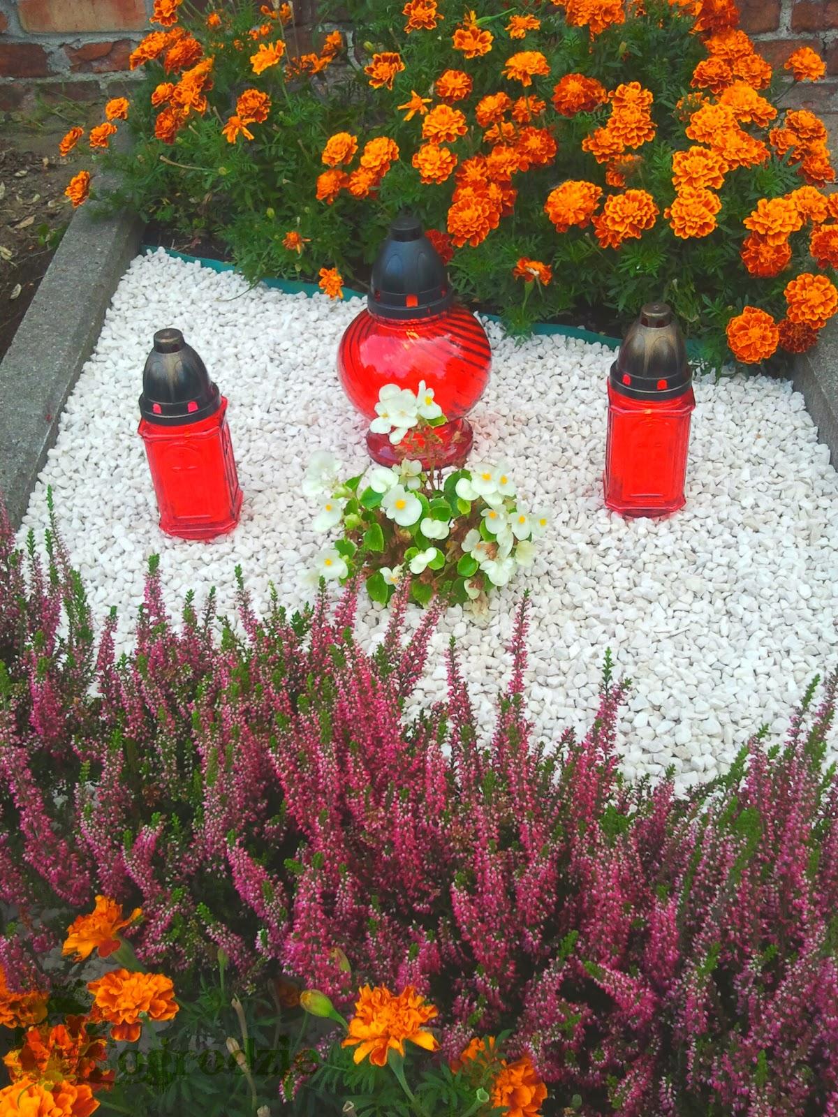 Kwiaty Na Groby