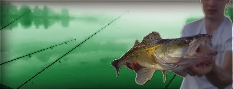 Roofvisvissers