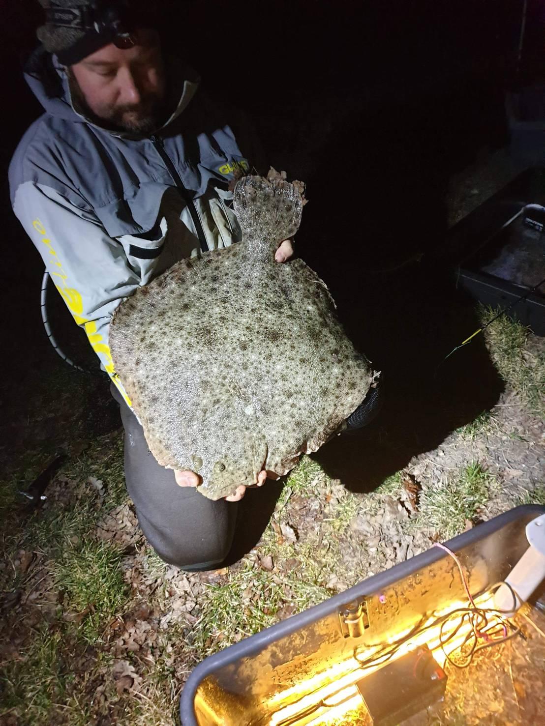 Piggvar 6,29 kg