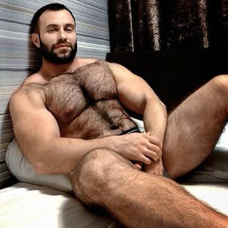 pelados e gostosos homens tesudos gay 13 peito peludo peito
