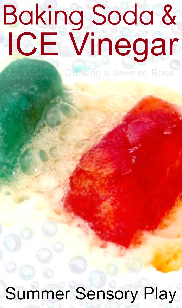 summer fun with baking soda and vinegar growing a jeweled rose. Black Bedroom Furniture Sets. Home Design Ideas