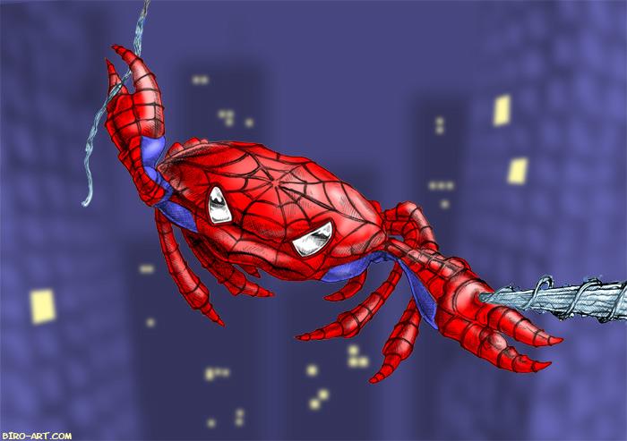 Spider crab - photo#20