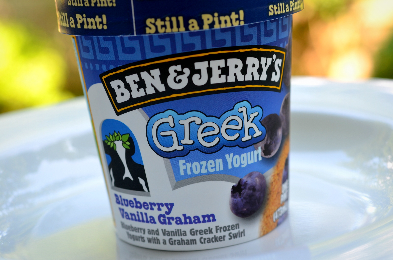 The Ice Cream Informant: REVIEW: Ben & Jerry's Blueberry Vanilla ...