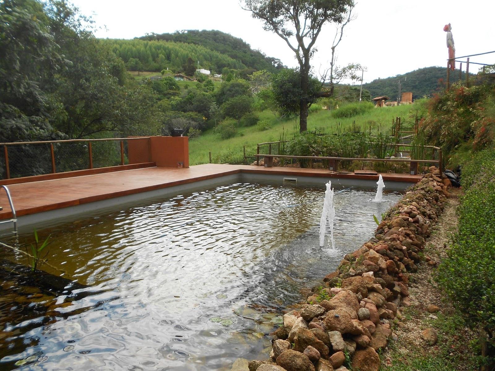Instituto da madeira piscina biol gica em itatiba s o paulo for Construir piscina natural