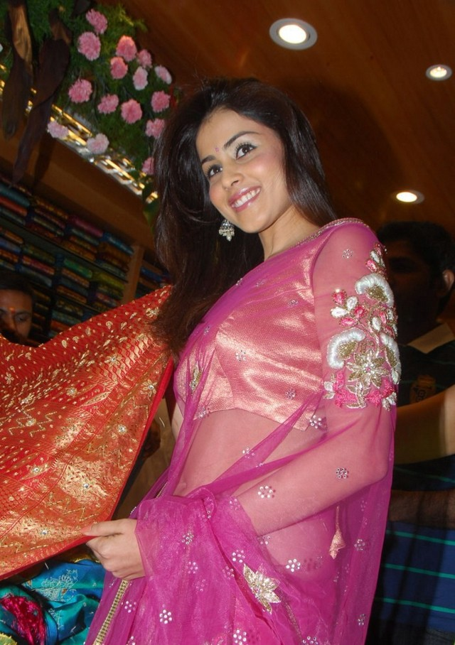 Genelia Dsouza Saree Photos