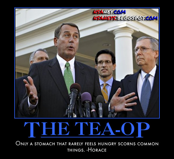 Nsaney's Motivational Posters: The TEA-OP : The TEA-OP PARTY