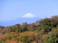 建長寺からの富士