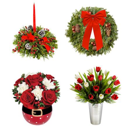 ORDER CHRISTMAS POINSETTIA PLANTS & FLOWERS