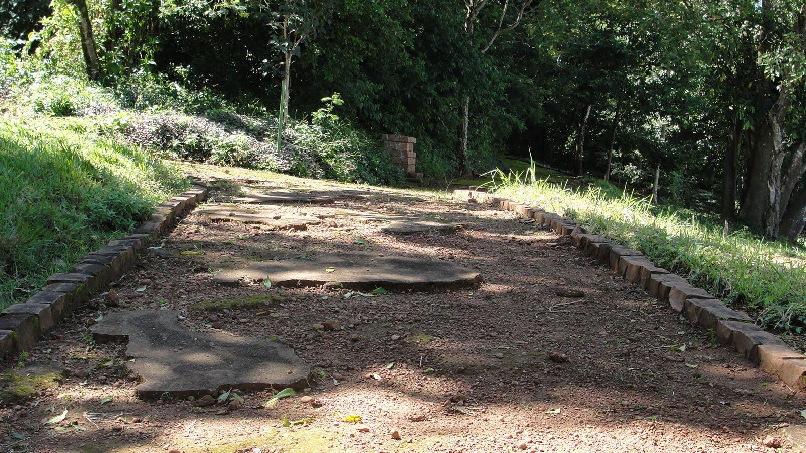 Imagens do Dia: ZOO Parque Jacarandá (Zoológico continua abandonado) #907B3B 1600 900