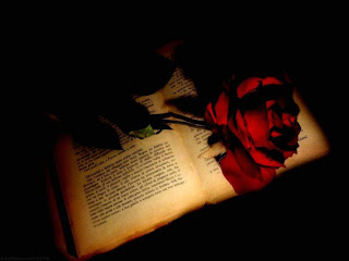Red Rose On A Book Dark Gothic Wallpaper