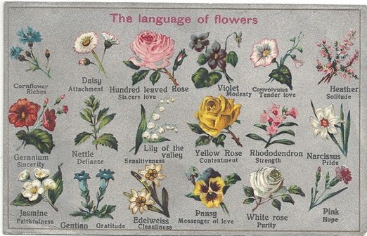 significance of flowers in wedding