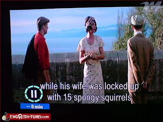 wife locked up with 15 spongy squirrels
