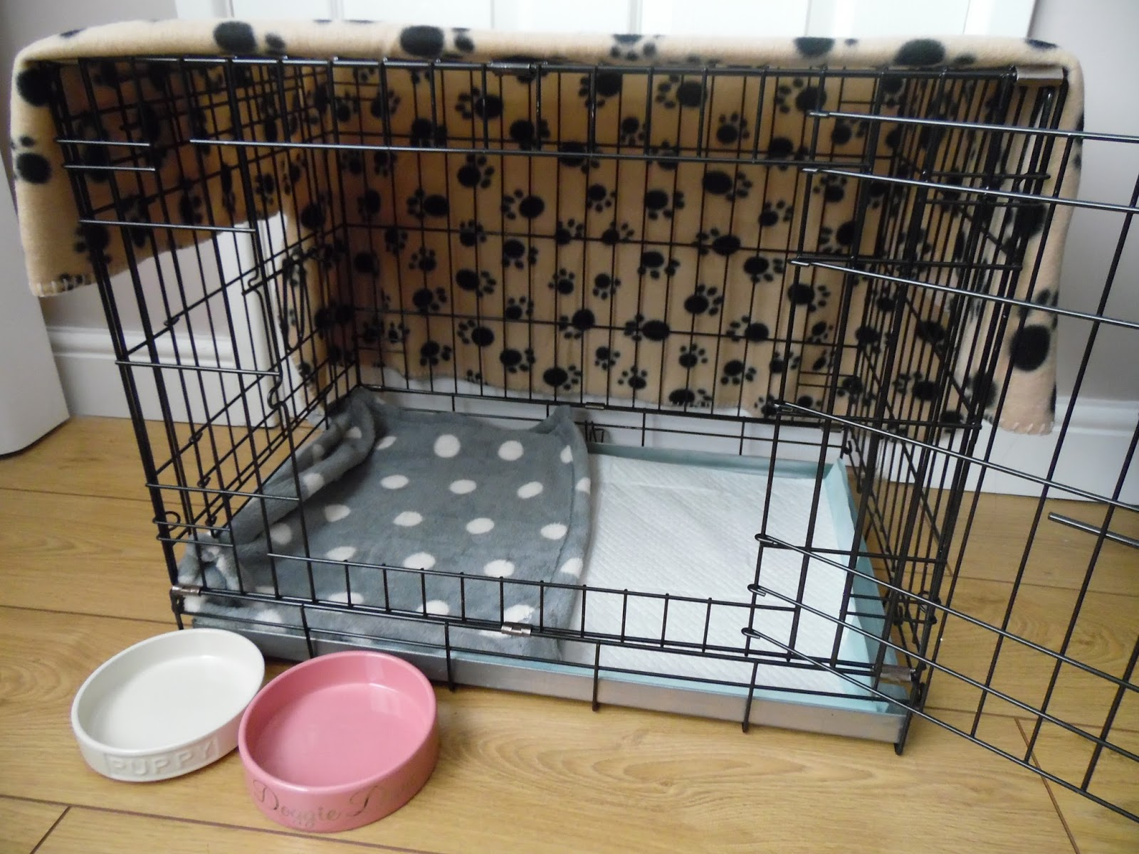 The Blog Of A Borderline Puppy Haul Getting A Puppy
