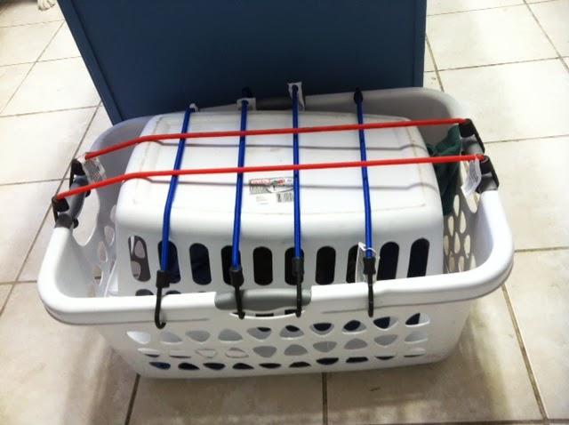Cat Carrier Built In Litter Box