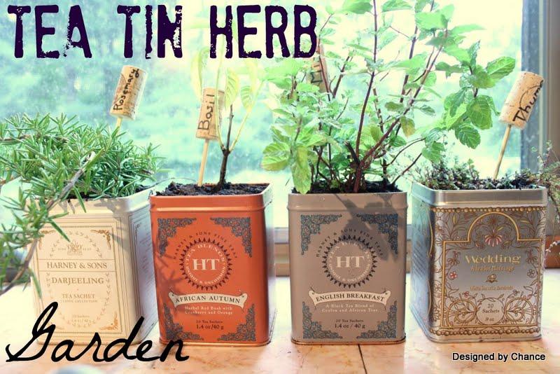 Designed by Chance Tea Tin Herb Garden