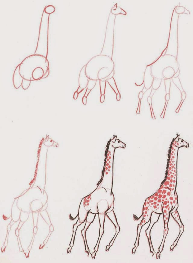 Le Coin Des Enfants Apprendre Dessiner Une Girafe