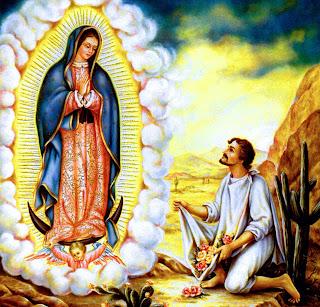 Imagenes religiosas foto de la virgen de guadalupe - Images of la virgen de guadalupe ...