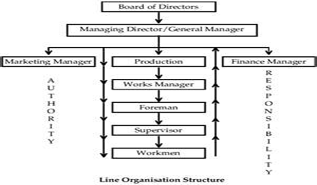 evolution of organizational structure micah The evolution of maternal care and communication eusociality, with overlapping generations and a non-reproducing worker caste, represents an extreme form of social behavior that extremely successful, but rare and difficult to evolve.